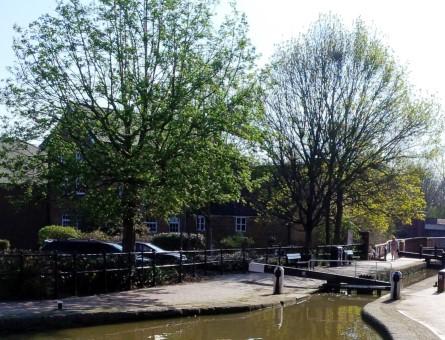 canal_walk_blog